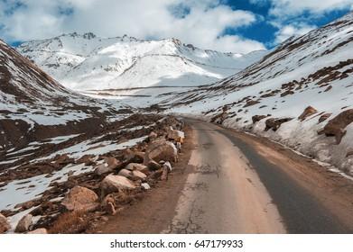 Road in mountains Himalayas.Ladakh, Jammu and Kashmir, India