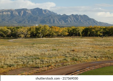 Road near and forest near Sandia mountains, New Mexico, USA