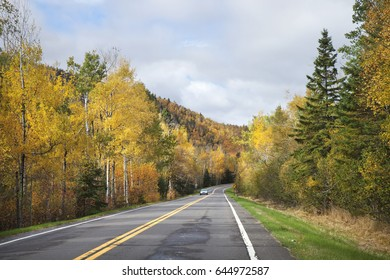 A road near the North Shore of Minnesota with trees in fall colors