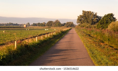 Road on dike of Dutch polder in early morning; Biesbosch National Park, Netherlands