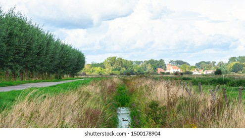 road on dike next to a ditch and a Dutch landscape with cows in the Ooijpolder in Gelderland