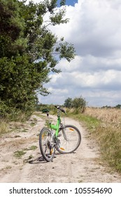 A road on the edge of the forest in summer's day with bike.