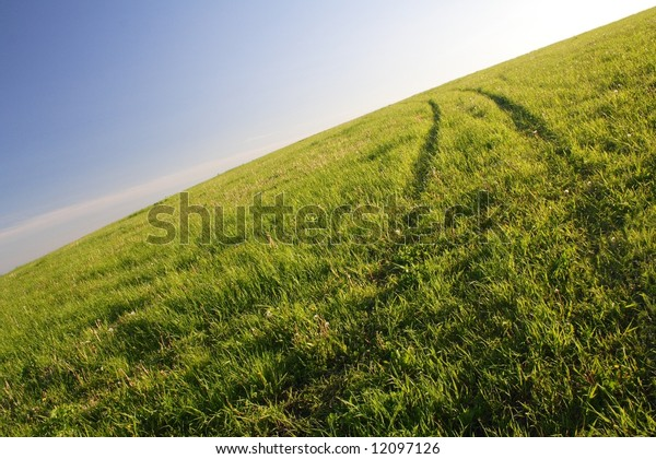 Road on a grass