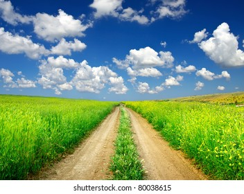 Road on green meadow. Composition of the nature