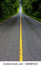 The road on the Khao Yai National Park in Thailand.Beautiful road.