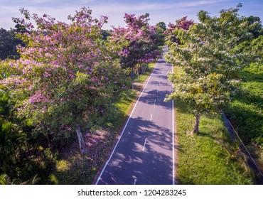 The Road of Padang Kerbau, Miri, Sarawak.