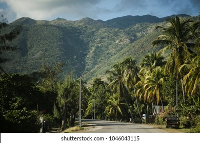 Road with palm trees, valley and mountains in the background. 'Grand Anse' region, Haiti