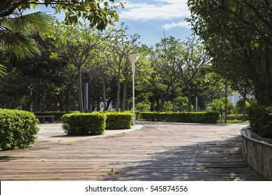 Road in a park during sunny day. Xiamen China