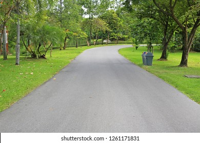 Road in the park with tree around. Peaceful green park and way for exercise and relax.