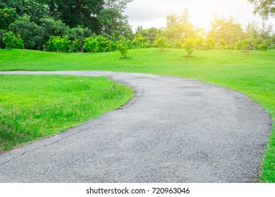 Road path pass through the tree park garden with many tree around area and landscape with beautiful warm light from the sun feeling motivation and refresh