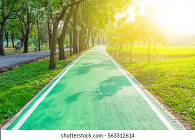 Road pathway in the park for relaxing walking jogging or running and exercise