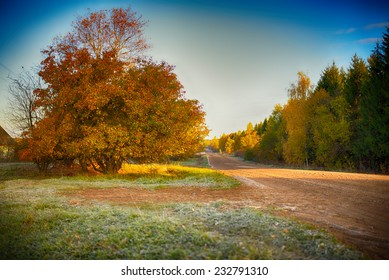 Road in rural district in autumn time