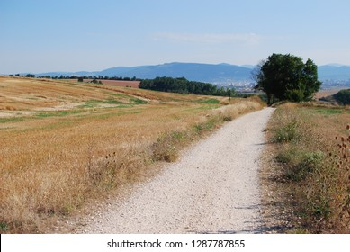 The road to Santiago de Compostela, Camino de Santiago, The way of st. James, across northern Spain, with lots of fields, trees and mountains in the background