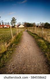 Road in scandinavian countryside