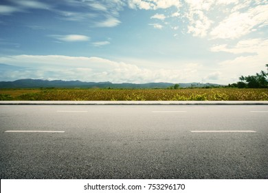 Road side paddy field view background