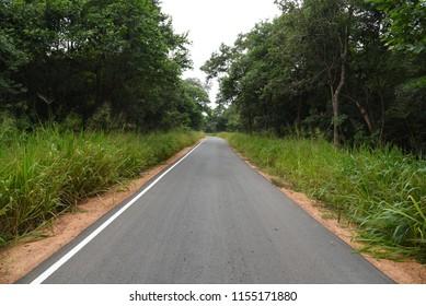Road to Sigiriya,Sri Lanka