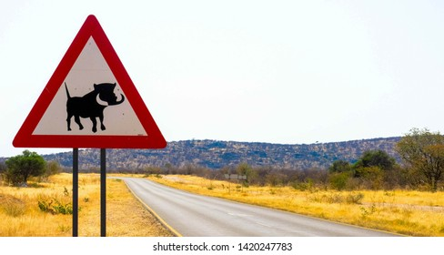 Road sign to the drivers of possible warthog crossing