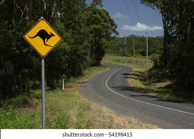 A road sign warning against kangaroos on a country road in Queensland, Australia.