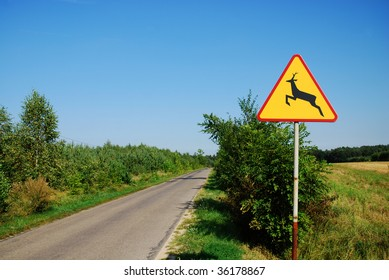 Road sign - wild forest animals on the road