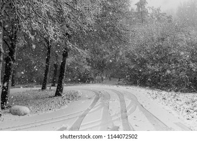 Road in the snow