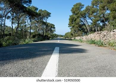 Road with stone walls, pine tress, Mallorca