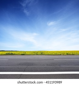 Road and sun flowers field with blue sky above. Summer landscape