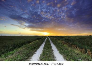 Road Sunset Everglades