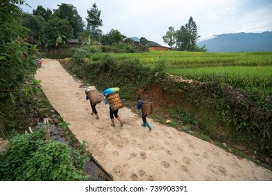 Road and terraced rice field landscape of Y Ty, Bat Xat district, Lao Cai, north Vietnam