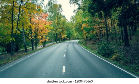 Road through the autumn forest at october.
