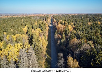 Road through the autumn forest top view from quad copter.