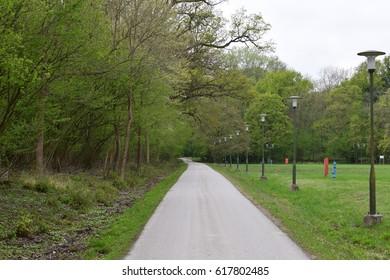 Road through avenue