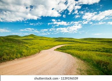Road through the Balck Hills in Custer State Park in South Dakota