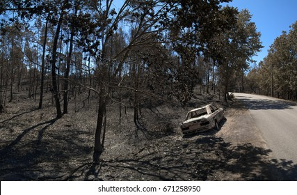 Road through the burnt forest and a car, also completely burnt, by the side of the road. Pedrogao Grande, Portugal.