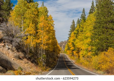The road through fall colors