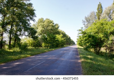 Road through the field in sunny day