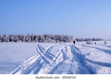 Road through the field to the winter forest