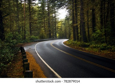 A Road through the Forest