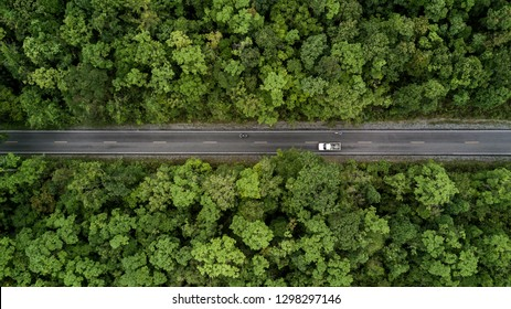 Road through the green forest, aerial view road going through forest.