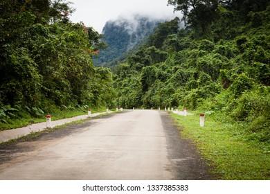 Road through the jungle, Ke-Bang National Park, Phong Nha, Vietnam