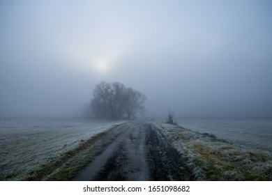 A road through the meadows in misty scenery