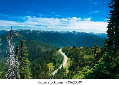 Road through the mountains in the Olympic national park in Washington