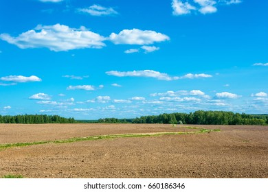 A road through the plowed field on a Sunny summer day.