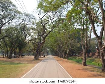 A road towards Ayutthaya historical park