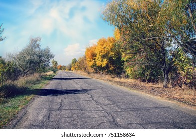 road with trees on the roadside