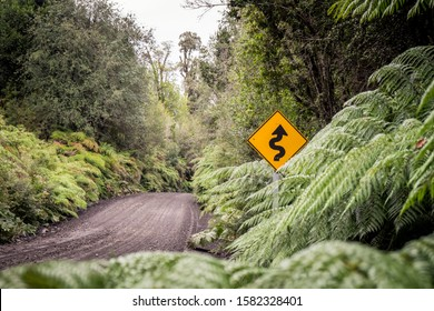 Road trip with camper van along Carretera Austral, Chile: Yellow road sign in green rainforest