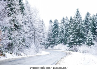 Road Trip Concept. Empty country road in winter. Trees and roadside in the snow. Winter trip.