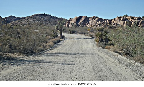 Road trip on a dirt road in Joshua Tree National Park California USA. Lined with rock formations, dry plants and a yucca tree.