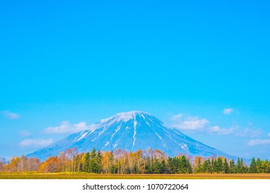 road trip and see beautiful active volcano of Mount Yotei. Active Volcano of Mt. Totei in Hokkaido, Japan. Golden forest in the autumn with volcano background in the back.