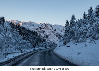 Road trough winter landscape snow forrest
