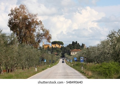 Road in Tuscany, with Pinus pinea and typical building in the background